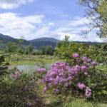 wunderschöne Provinz Pailin