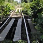Gleise Bambusbahn