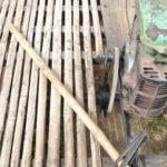 Steuerung Bambusbahn