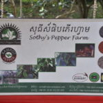 Besuch Sothy's Pfefferfarm
